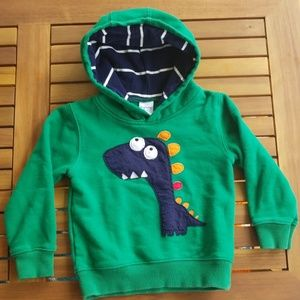 2T boys Dinosaur Sweatshirt